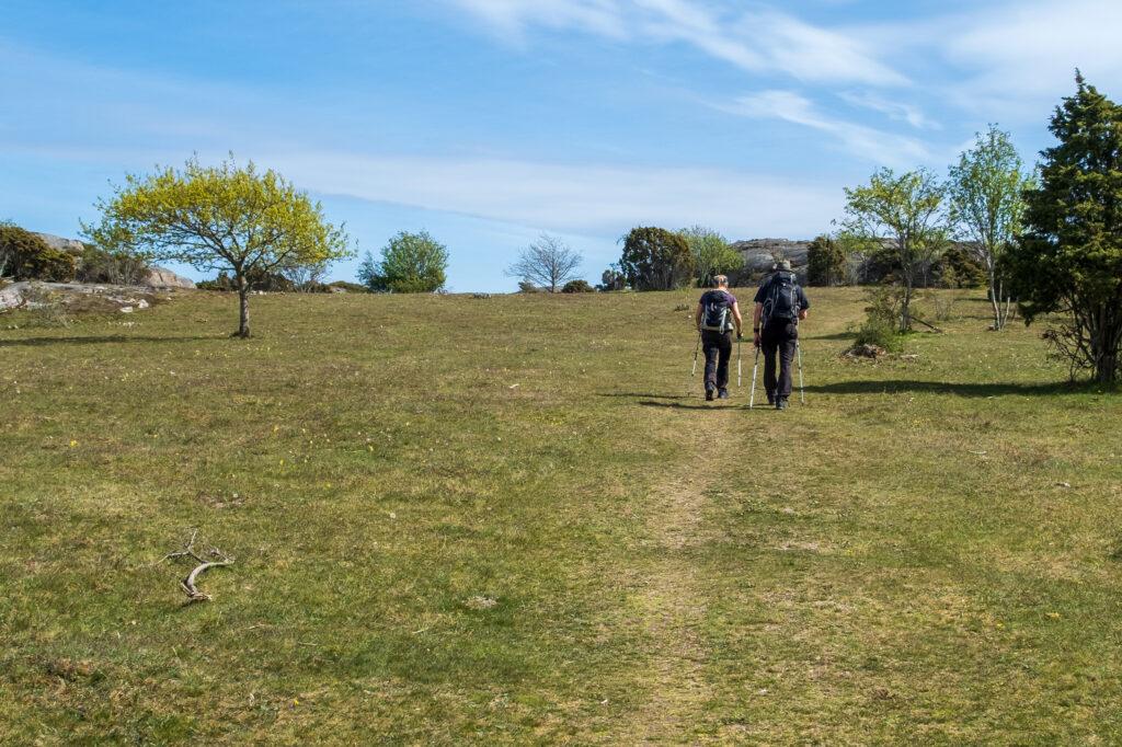 Två vandrare på en på stig. Foto.