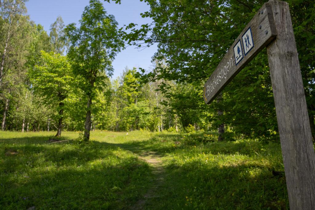 Foto på stigvägvisare av trä.