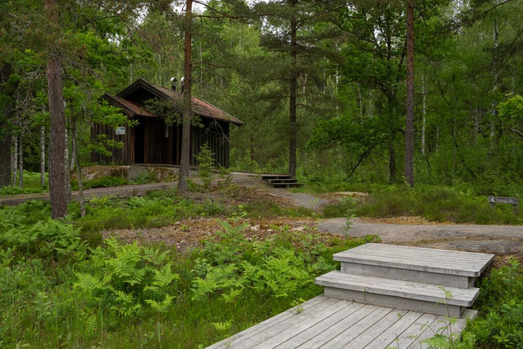 Byggnad i skogen och breda trappsteg i förgrunden. Foto