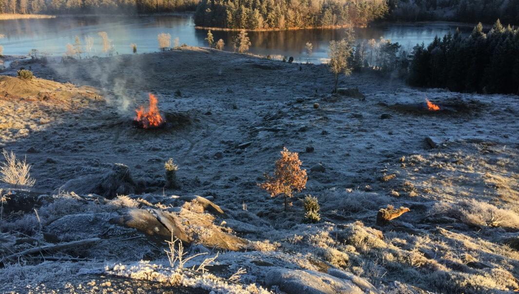 Utsikt över en sjö och på slyhögar som brinner.