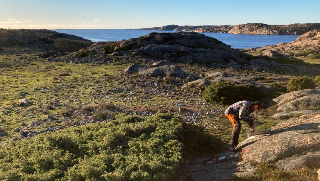 Person borrar i berg för att kunna markera en stig. (Foto)
