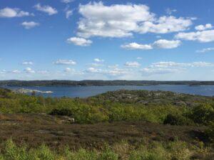 Utsikt från Älgön. Landskapet på ön domineras av ljunghed och klippor. Foto.