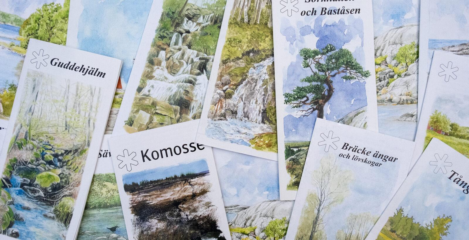 Foldrar med vackra naturillustrationer på framsidan. Foto.