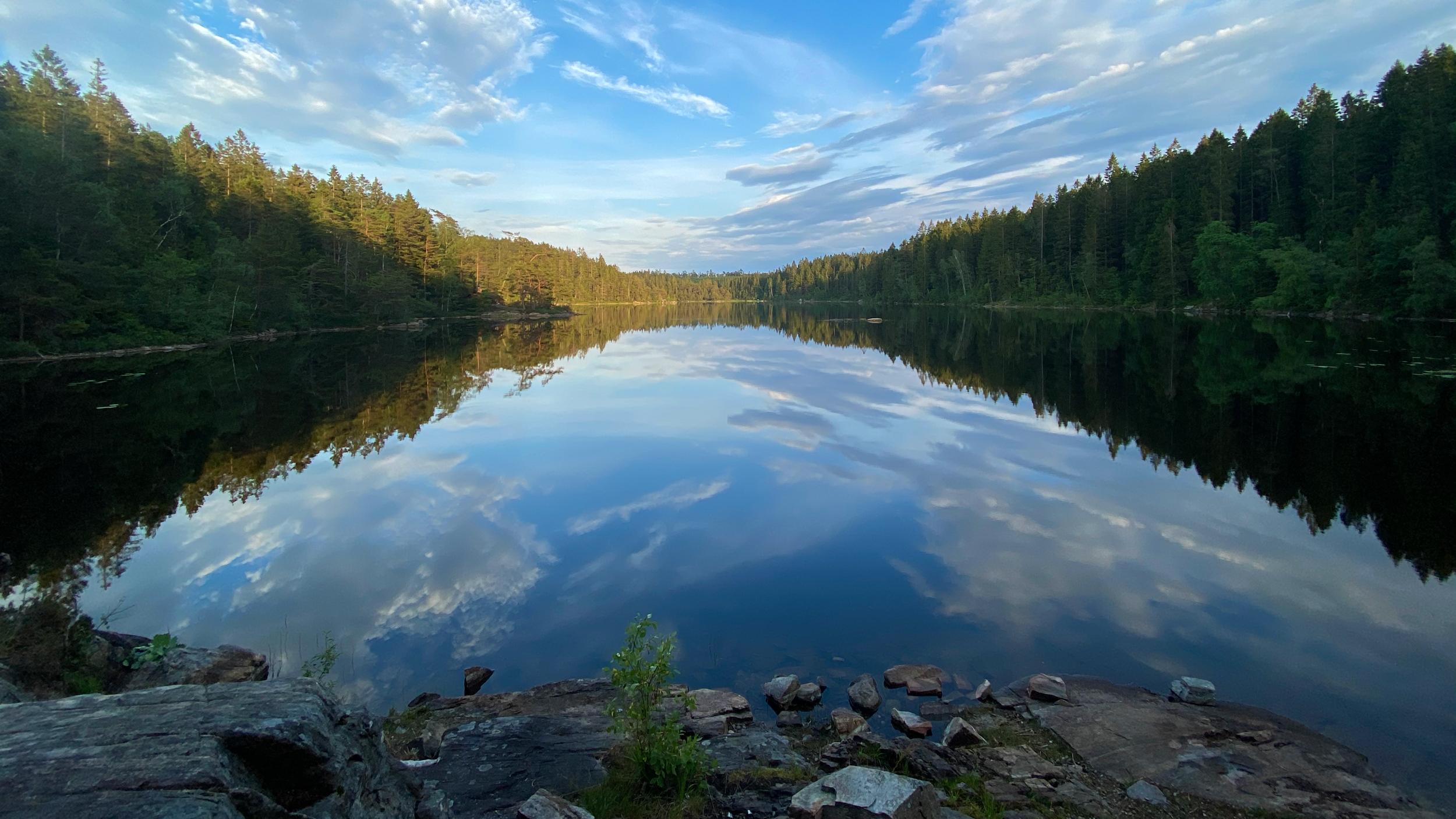 Utsikt över sjö. Foto.