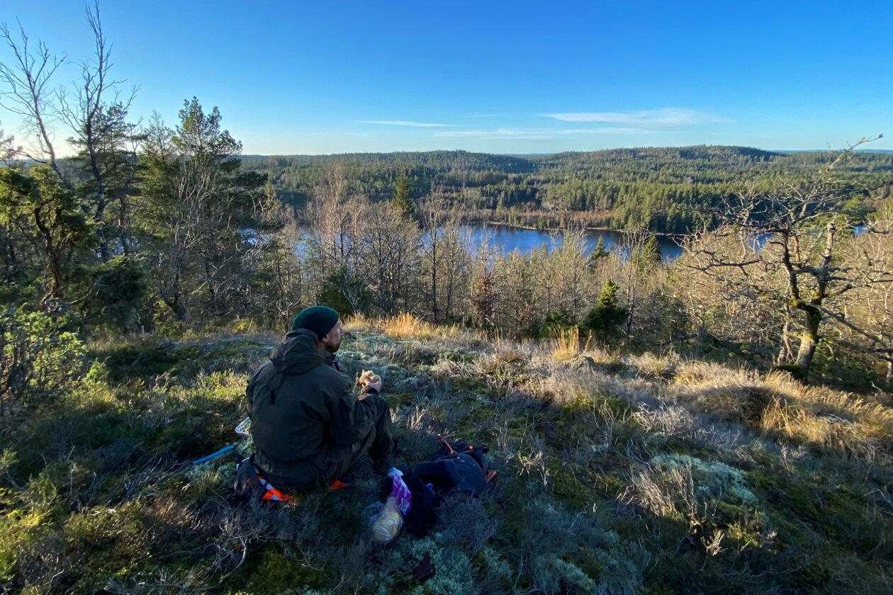 Person sitter och fikar ute i skogen och ser på sjöutsikten. Foto.