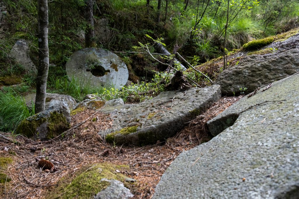 Kvarnstenar i skog. foto.