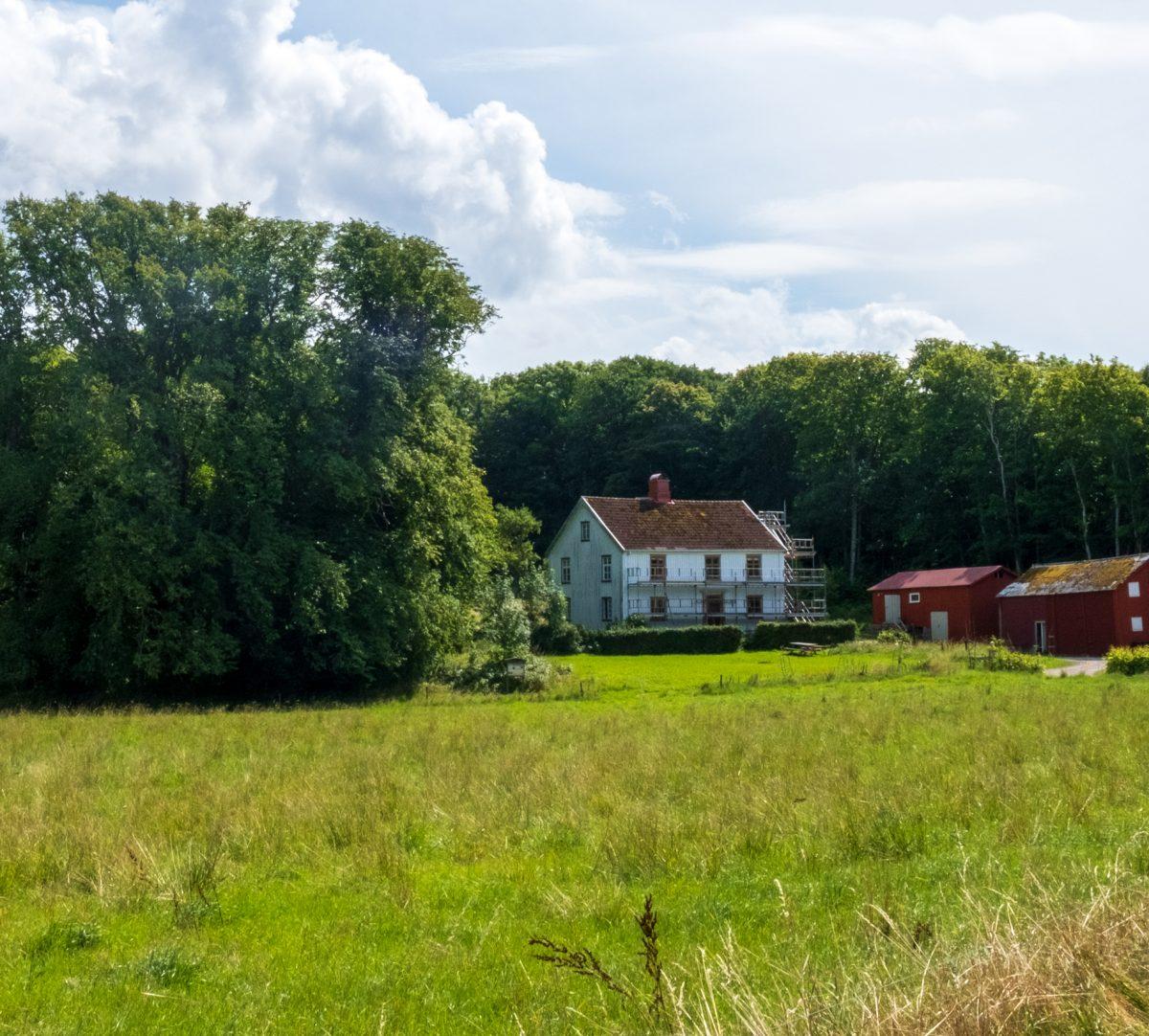 Vit mansbyggnad med två röda lador. Foto.