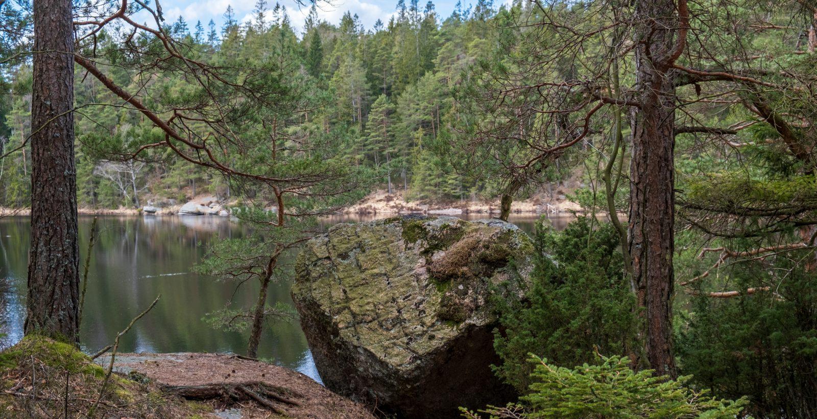 Stenblock, sjö och barrskog. Foto.
