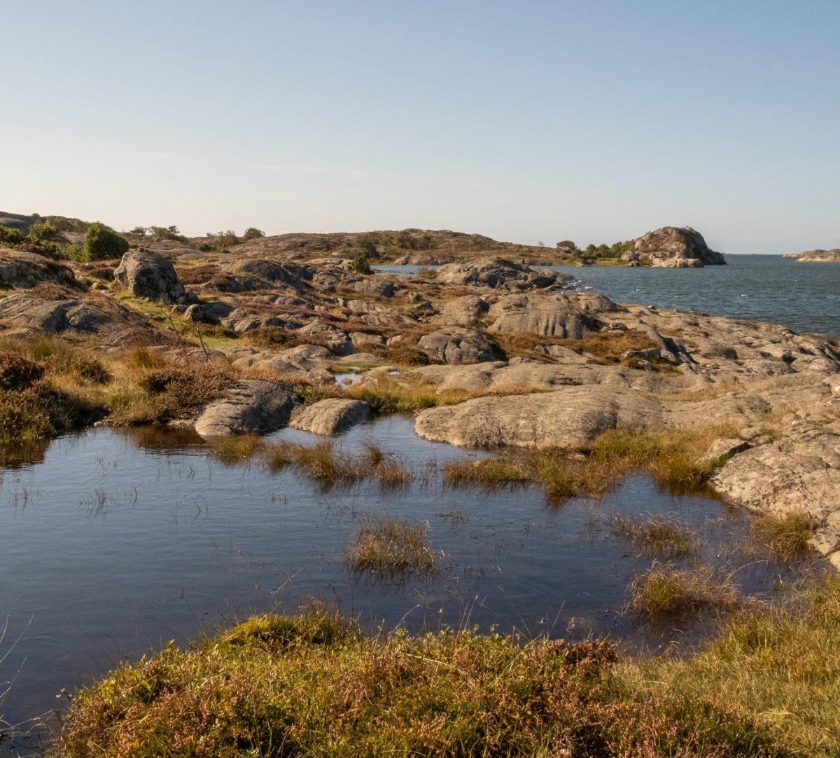 Utsikt över hav och klippor. Foto.