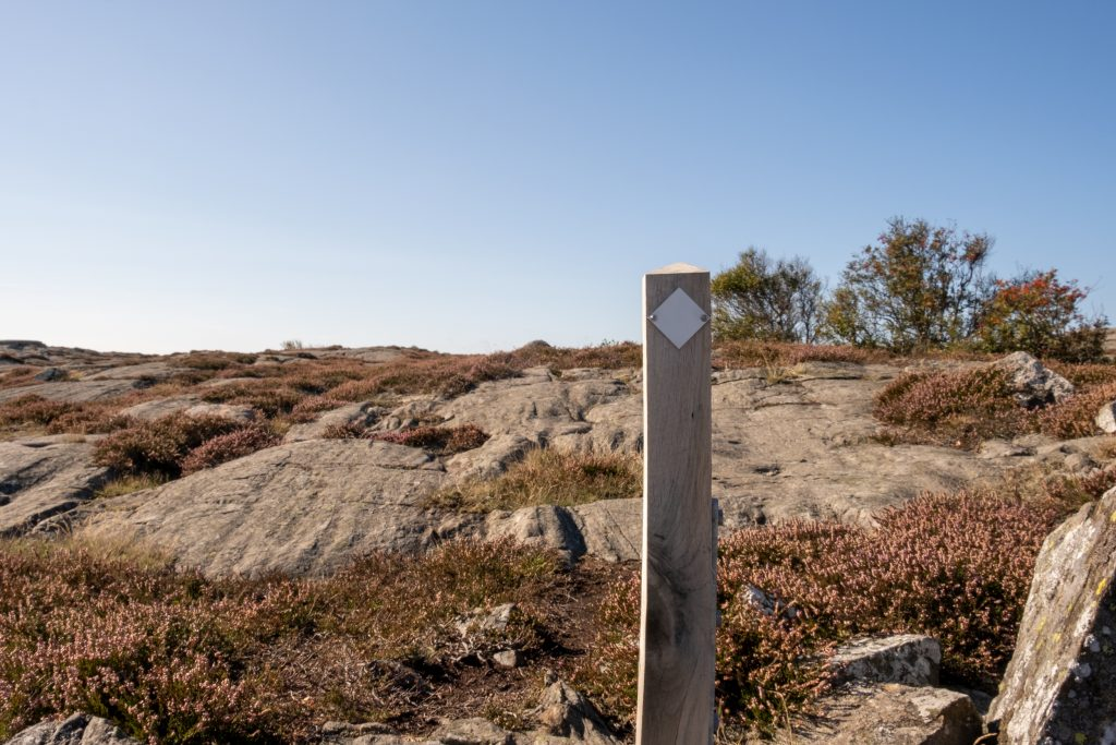 En stolpe med vit bricka (stigmarkering). Ljung och hällar i bakgrunden. Foto